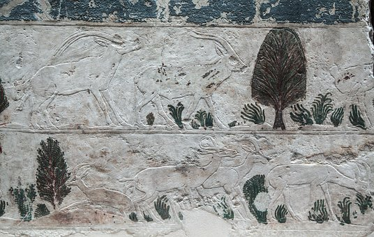 Old Egyptian Painting, Goats, Animals, Fauna, Grass