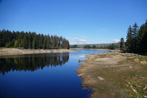 Or Pond, Dam, Braunlage, Nature, Forest, Water