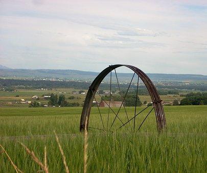 Irrigate, Irrigation Pipe, Irrigation Wheel