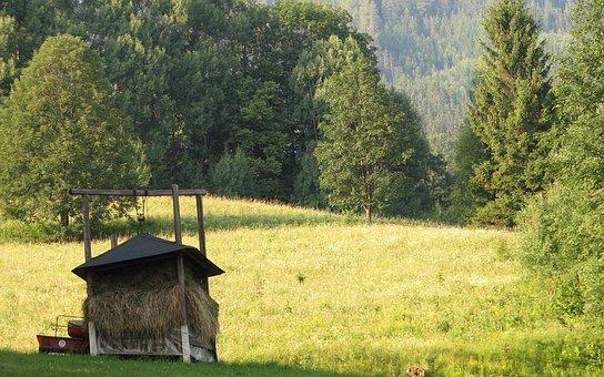 Mow, Hay, Meadow, Pastures, Krmelec, Economy