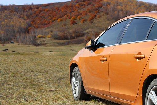 Prairie, Early Autumn, Red Leaves, Automotive, Orange