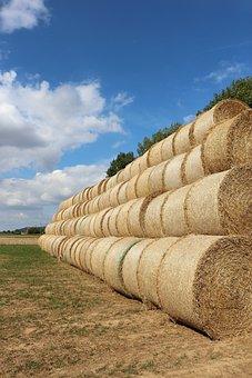 Straw, Straw Bales, Field, Stubble, Round Bales