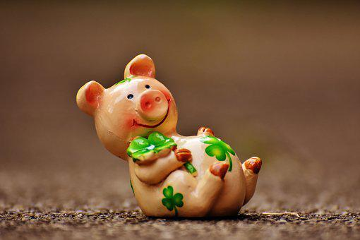 Lucky Pig, Fig, Luck, Lucky Charm, Funny, Sweet, Animal