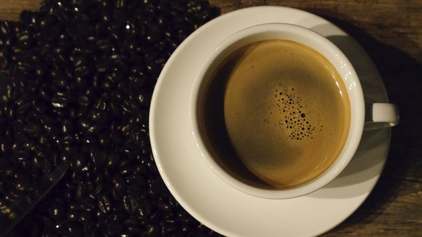 Coffee, Tabitha, Snap