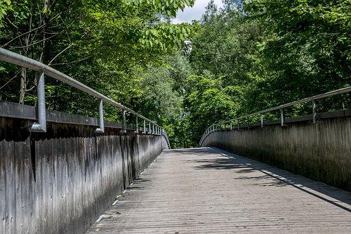 Web, Bridge, Hiking, Wooden Bridge, Railing, Transition