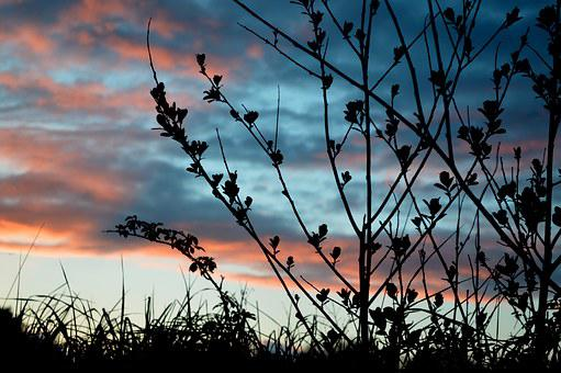 Sunset, Sky, Cloud, Landscape, Nature