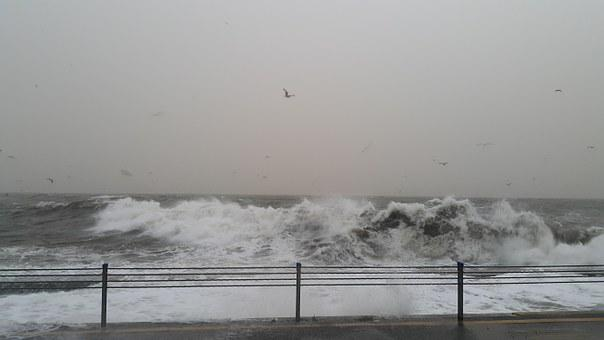 Sea, Nature, Water, Natural, Wave, Storm, Ecology