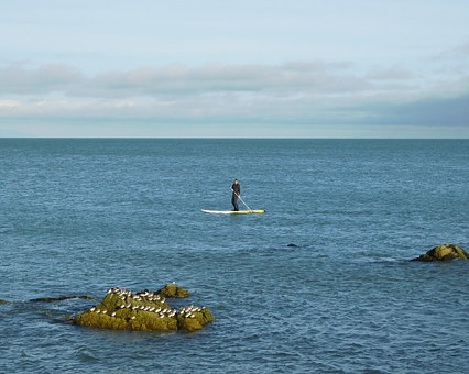 Walk On Water, Stand Up Paddle Board, Sea, Seascape