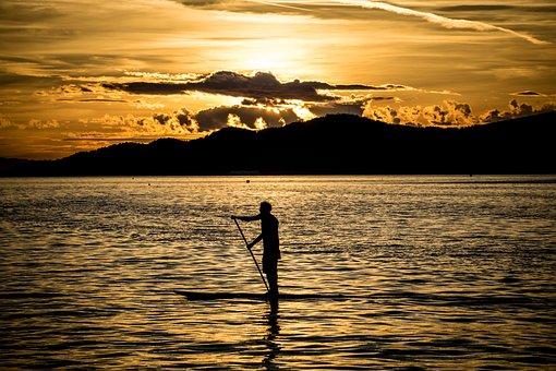 Paddle Board, Sunset, Sup, Stand Up Paddling, Nature
