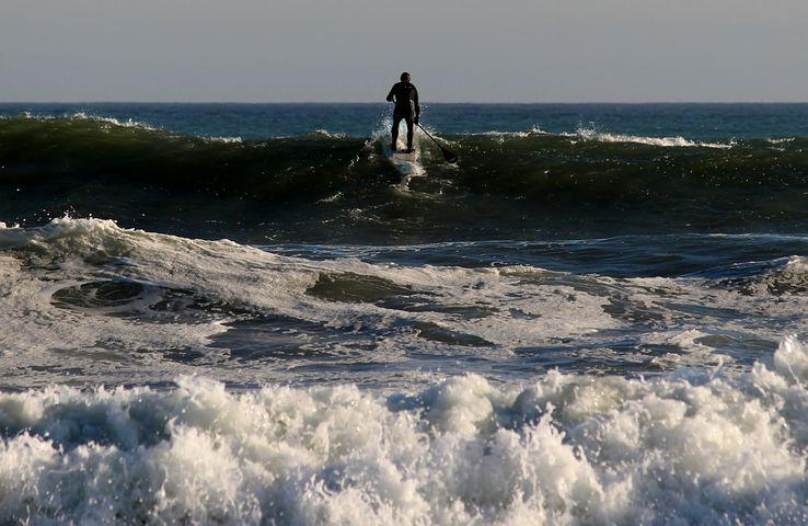 Surfer, Paddle, Stand Up Paddling, Wave, Surfing, Wet