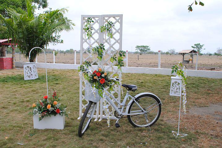 Trim, Bicycle, Wedding, Decoration, Roses