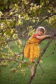 Person, Human, Child, Girl, Dress, Tree, Aesthetic