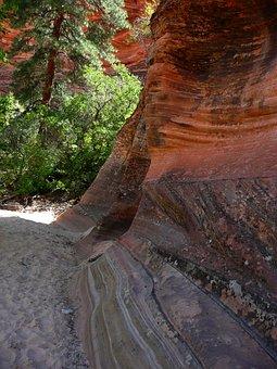 Zion National Park, Utah, Usa, Red, Rocks, Creek Bed