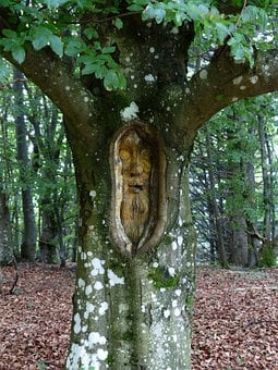 Tree Face, Forest Spirit, Carving, Wood, Log