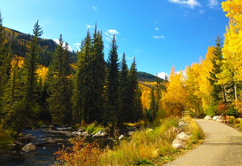 Mountains, Autumn, Trees, Fall, Creek, Season, Colorado