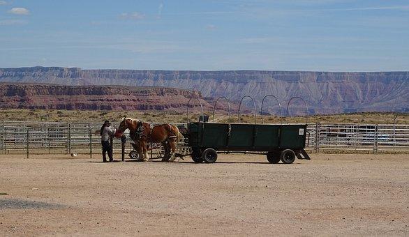 Ranch, Hualapai, Indian, Grand Canyon, Wagon