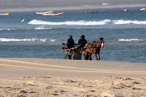 Sea, Beach, Cart, Horses, Waves, Senegal