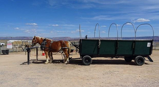 Ranch, Hualapai, Indian, Wagon, Horse, Cart, Transport