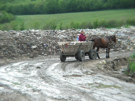 Romania, Gipsy, Horse, Garbage, Pulling, Wooden, Rustic