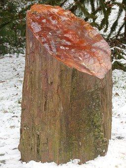 Tribe, Log, Petrified, Petrified Wood