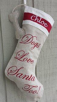 Christmas Stocking, Dog, Holidays, Christmas