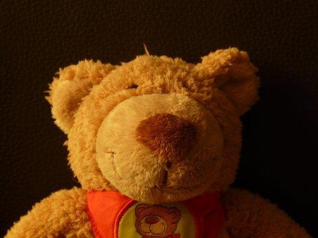 Teddy Bear, Soft, Fluffy, Cuddly, Purry, Button Eyes
