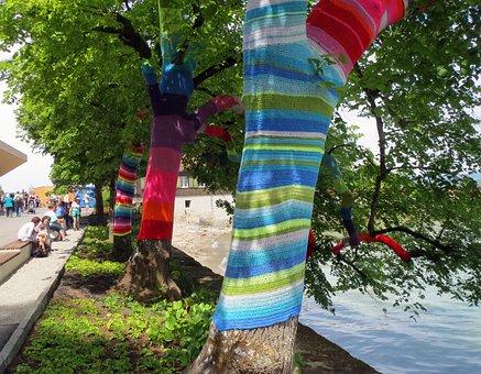 Trees, Mainau, Mainau Island, Lake Constance, Park