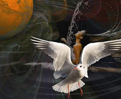 Innocence, The Purity Of The, Composition, White Bird