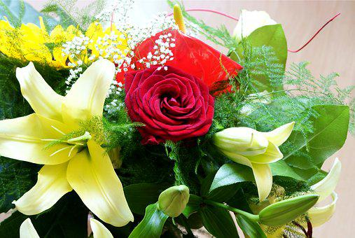 Flowers, Clear, Bouquet, Rose, Red, Yellow, Anthurium