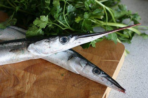 Garfish, Fish, Spring, Dining, Parsley, Taste