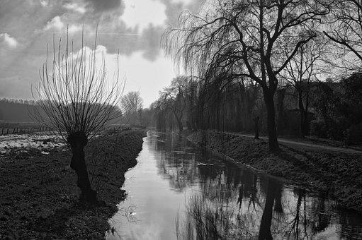 Pasture, River, Niederrhein, Landscape, Nature, Green