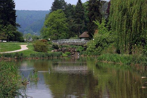 Park, Lake, Pond, Water, Pasture, Tree, Weeping Willow