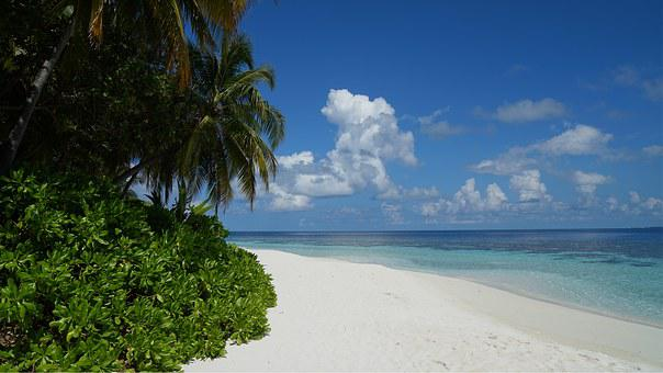 Maldives, Holiday, Sea, Beach, Sun, Water, Atoll, Blue