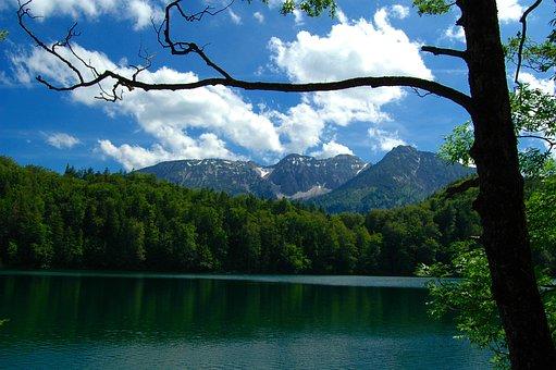 Bavaria, Füssen, Alatsee, Lake, Germany, Nature, Alpine