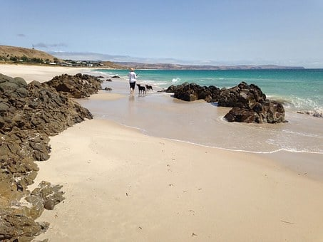 Sandy Beach, Seaside, Blue Sky, White Sand, Nature