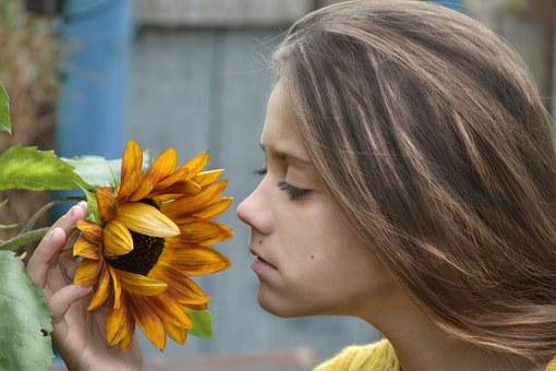 Girl, Sunflower, Flower
