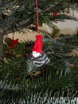 Imp, Fir, Dwarf, Holly, Christmas Decorations, Conifer