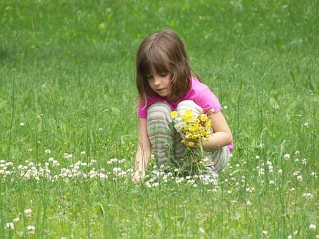 Picking Flowers, Girl, Child, Beautiful, Person, Little