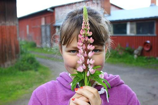 Girl, Flower, Lilac Flower, High Summer, Purple, Pink