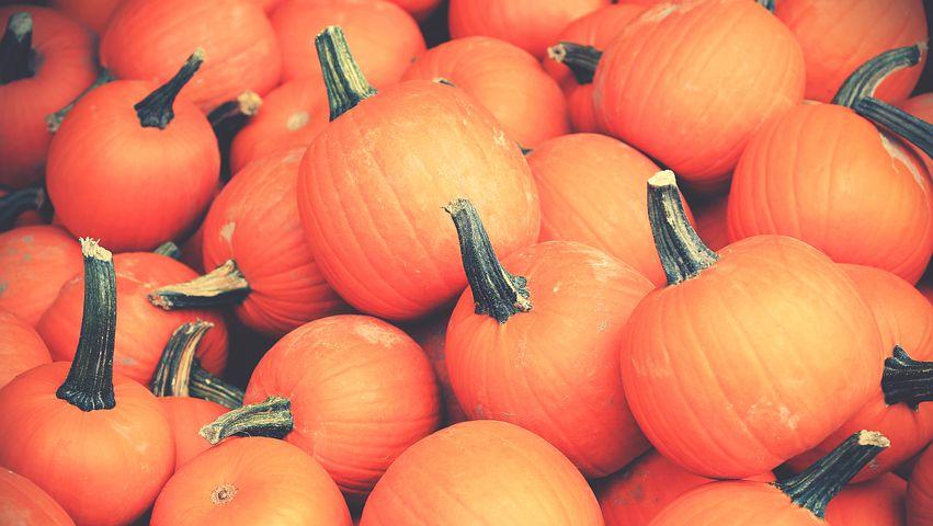 Bunch, Healthy, Orange, Pile, Pumpkins, Vegetables