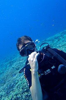 Diving, Diver, Scuba Diving, Blue, Sea, Water