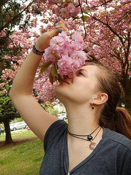 Cherry Blossom, Flavor, Flowers, Branch, Girl, Tereza