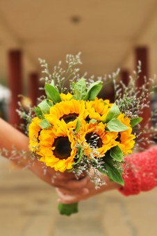 Bouquet, Floral, Flowers, Girl, Hold, Wedding