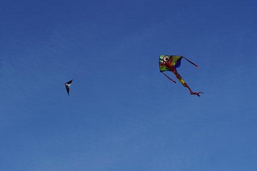 Dragon, Kite Flying, Kites Rise, Sky, Blue, Autumn
