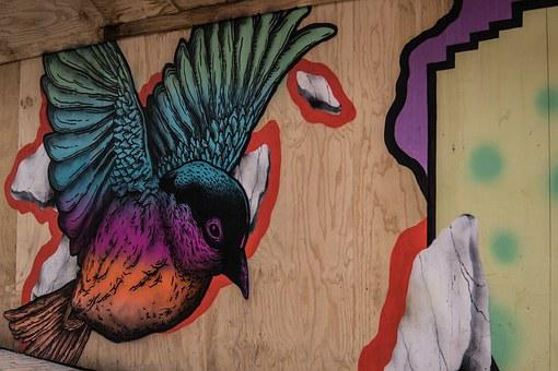 Graffiti, Bird, Painting, Art, Street Art, Colorful
