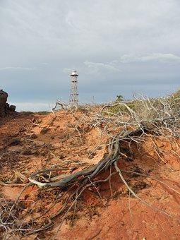 Brushwood, Desert, Tower, Air, Drought