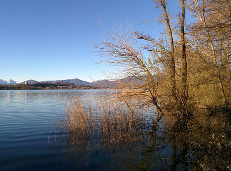 Lake, Water, Shrubs, Trees, Rovi, Sky, Mountains