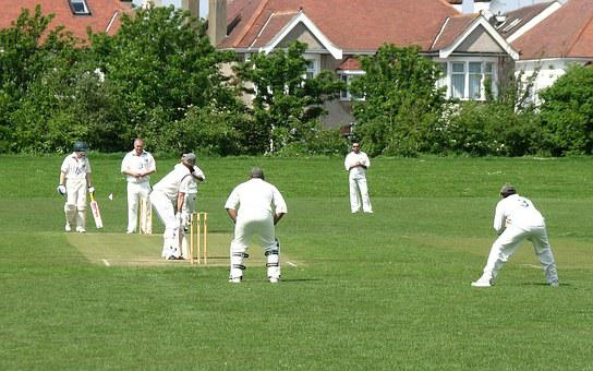 Cricket, Field, Sport, Game, Outdoors