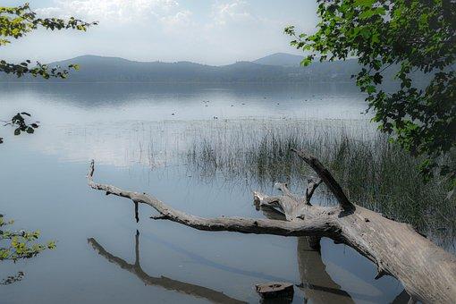 Lake, Wood, Laacher Lake, Maria Laach, Haze, Fog