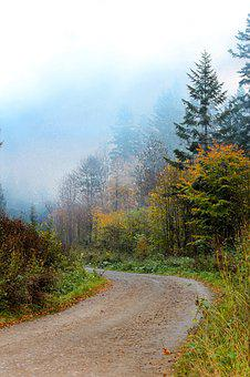 Bieszczady, The Road In The Forest, Landscape, Nature